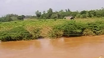 Video : Andhra Pradesh rain: Farmers worst hit, crops in 5 lakh hectare damaged