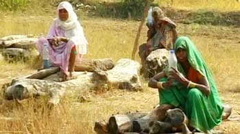 Video : Farmers sit with kerosene on pyres protesting land acquisition in Madhya Pradesh