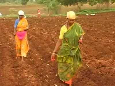 Video : This monsoon, Karnataka farmers sowing 'seeds of hope'