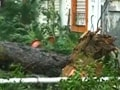 Video : Cyclone Thane: Ground Zero report from Chennai