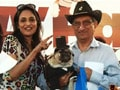 A carnival of dogs in Mumbai