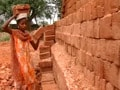 Video : Teen earns Rs 100 for carrying 1000 bricks