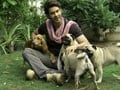 Keith meets million dollar pets in Hyderabad