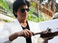 Video: SRK celebrates birthday with fans and media, Thumbs up for <i>Luv Shuv...</i>