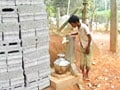 After Maharashtra, Kerala declares drought