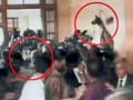 Video: Shoe hurled at Pervez Musharraf as he appears before Sindh High Court