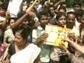Video : Will Saradha scam impact panchayat polls in West Bengal?