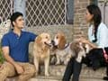 Paras plays around with 6 cuddly fur babies in Guwahati