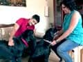 Paras meets two families of dog lovers in Chennai