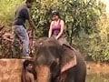 No Big Deal in Goa