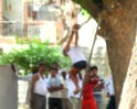 Video : 75-year-old hung from tree, tortured by cops
