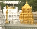 Video : Tirumala, God's own very crowded country