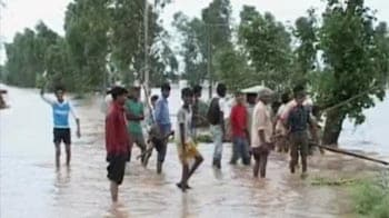 Video : Parts of Punjab, Haryana are flooded