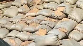 Video : In Punjab, rotting grain 'bugs' workers