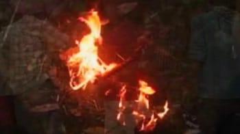 Video : तेंदुए को जिंदा जलाकर मार डाला