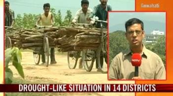 Video : Drought like situation in 14 districts Assam