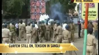 Video : Tense Ganpati season for Sangli, Maharashtra