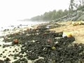 Video: Oil spill damage: Who should pay?