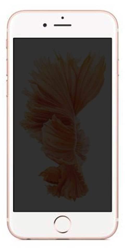 Apple iPhone 6s price 45f40a1ec6