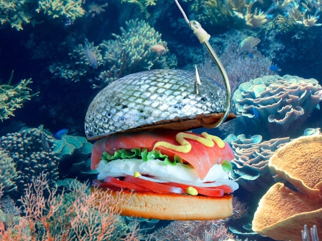 Photo : Burgers Have Never Looked This Wacky!
