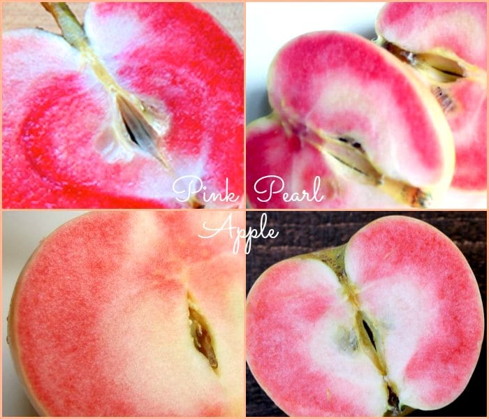 Pink Pearl Apple