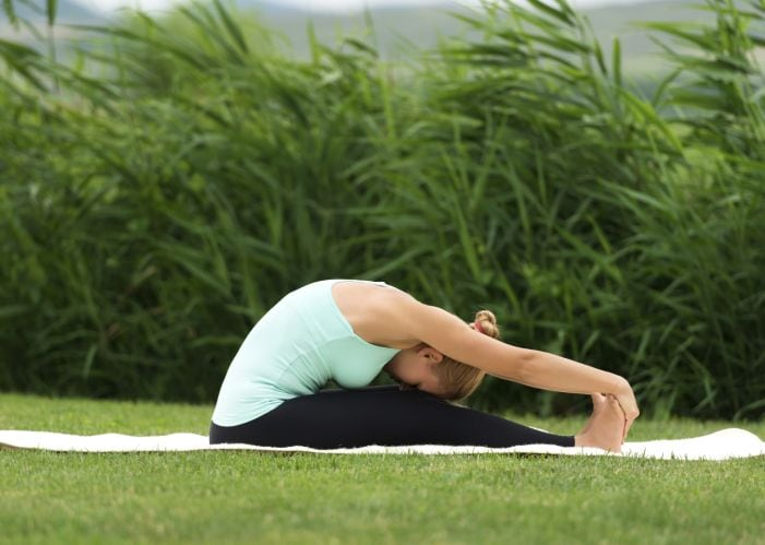 Yoga for Health: Easy Postures to Combat Lifestyle Diseases