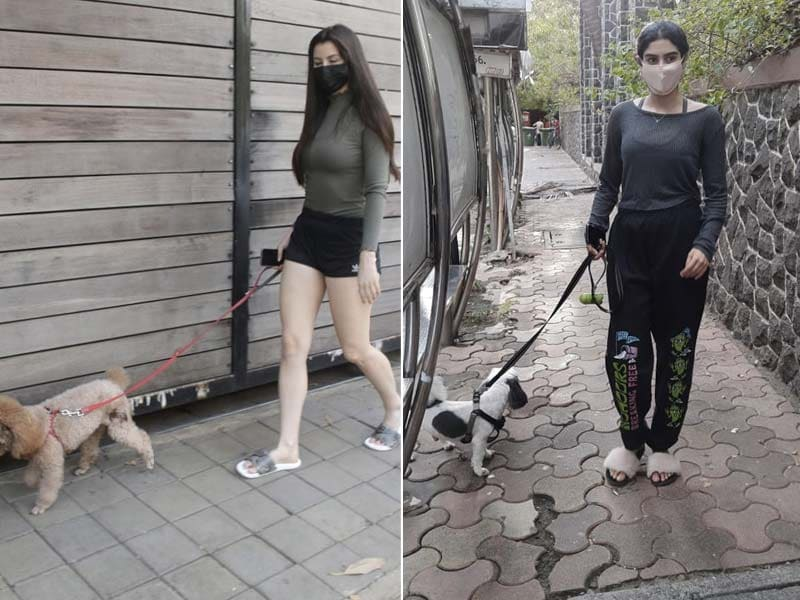 Photo : Giorgia Andriani, Khushi Kapoor's Day Out With Their Adorable Pet Pooches