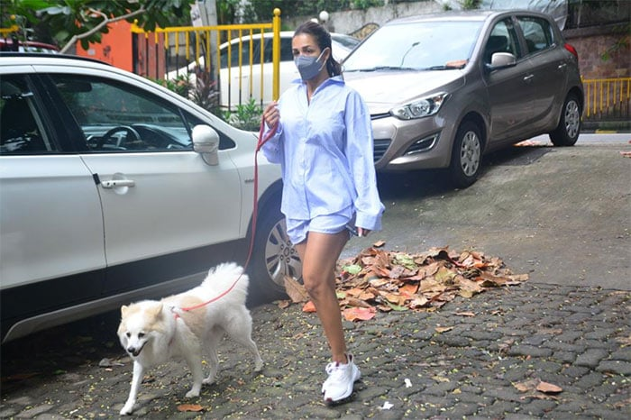 Malaika Arora was pictured with her dog in Bandra.