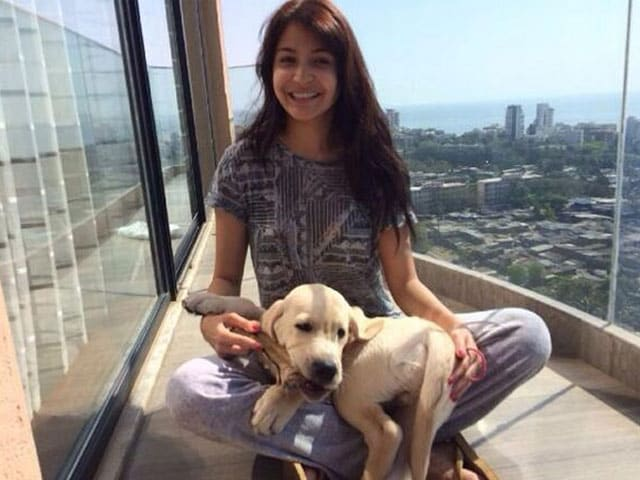 The other 'dude' in Anushka Sharma's life