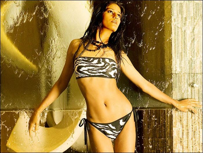 Poonam Pandey to bare all only for Team India
