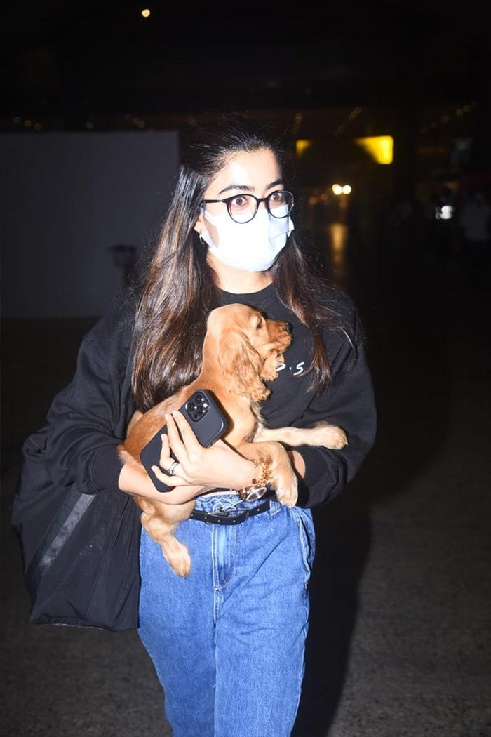 Airport Blues: Rashmika, Monalisa And A Furry Pal