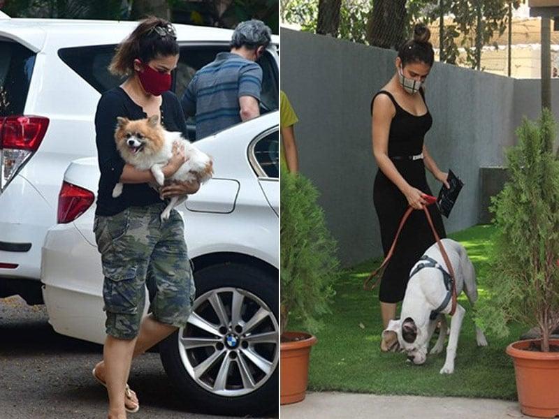 Photo : Raveena Tandon, Fatima Sana Shaikh Spotted With Their Pet Pooches