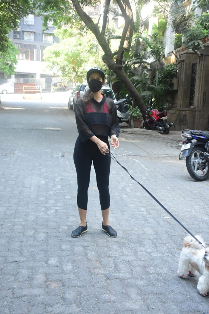 Sophie Choudry was also pictured in Bandra with her pet dog.