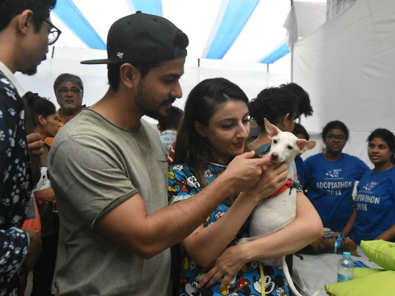 Soha Ali Khan And Kunal Kemmu Attend Pet Adoption Drive