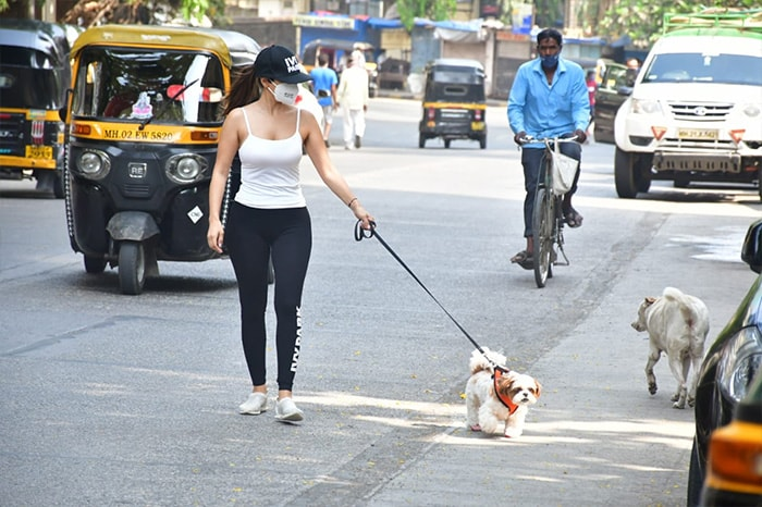 Spotted: Sophie Choudry And Her Adorable Pet Pooch