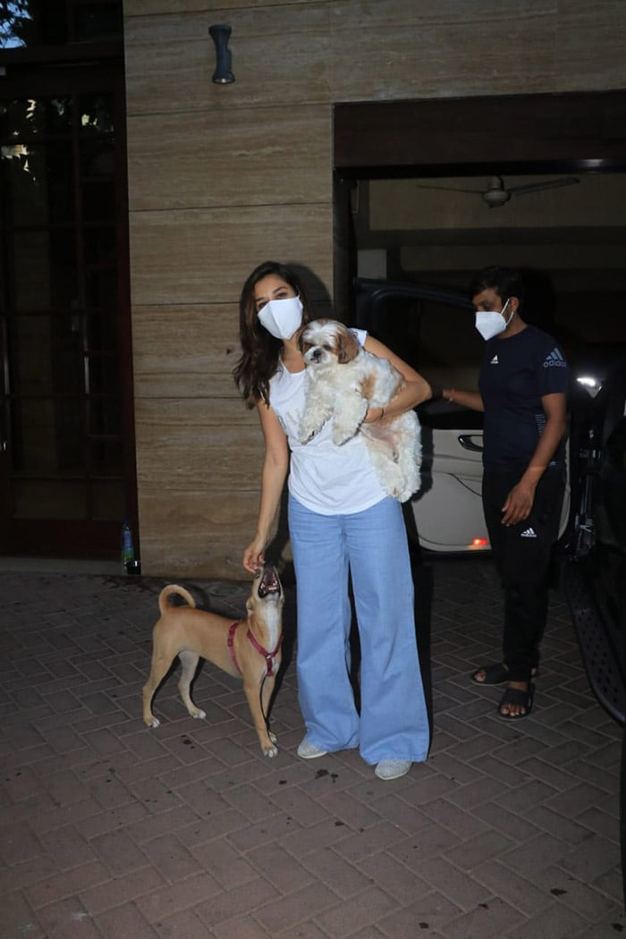 Spotted: Sophie Choudry With Her Adorable Pet Pooch And New Furry Friend