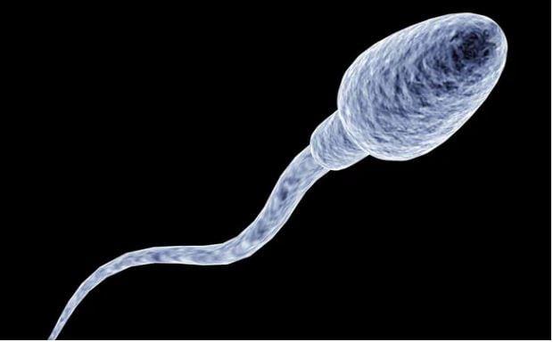 अगर कॉन्डोम बीच में ही फट जाता है तो उसे फौरन बदल दें. अनचाहे गर्भधारण को रोकने के लिए तुरंत गर्भ निरोधक गोली लें.