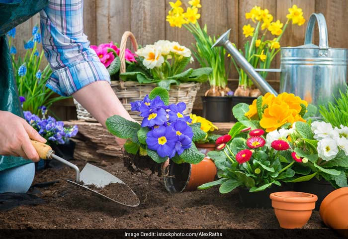 Plant a garden and work in it during the spring and summer. Gardening will involve your body in a whole range of movements and helps you in relaxing as well.