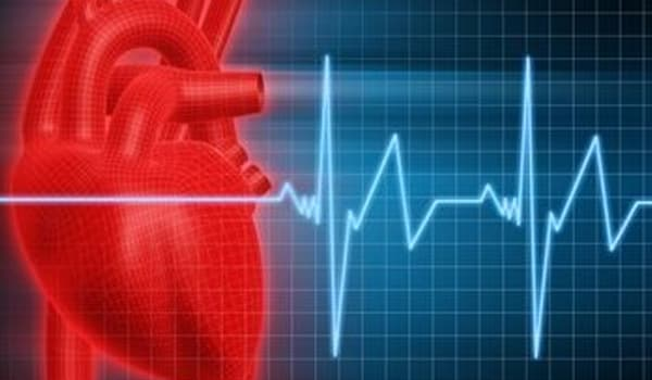 Regular exercising helps reducing the risk of heart disease by improving blood circulation throughout the body and causes the development of new blood vessels in the heart and other muscles.