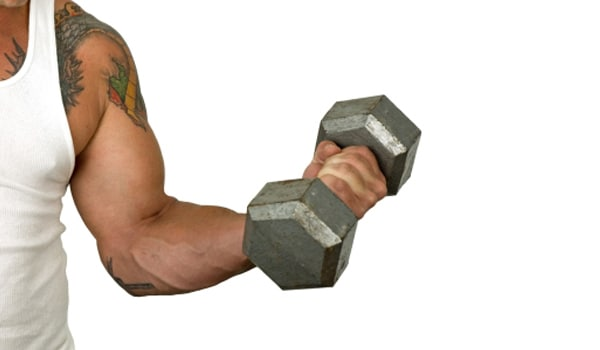 Increases muscle strength, giving greater capacity for other physical activities. Maintains, tones, and strengthens your muscle.