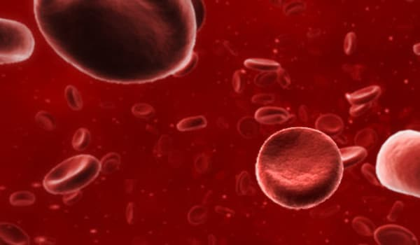 Haemoglobin (Hb) deficiency results in anaemia and can be caused due to various reasons. In case of iron deficiency anaemia, the treatment includes taking iron supplements and food rich in iron. It is believed that iron from animal sources is more beneficial in increasing haemoglobin levels than that from plant sources.