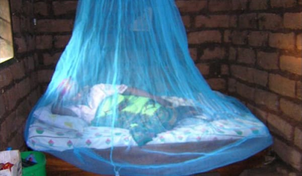 Mosquito nets help keep mosquitoes away from people and greatly reduce the infection and transmission of malaria.