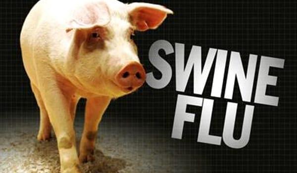 Swine influenza, or 'swine flu