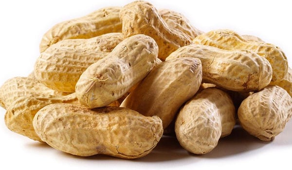 Peanut is a good source of Coenzyme Q10, which protects the heart during the period of lack of oxygen during winters.