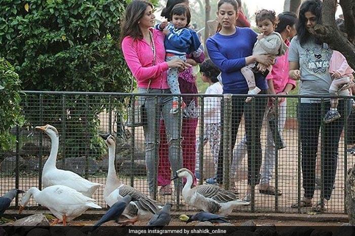 Viral Photos: जब पार्क में आम बच्चों की तरह खेलती नज़र आईं मीशा
