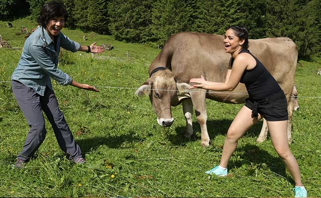 Photo : Swiss Made Adventures: Bollywood Dreams, Mouth-watering Food And An Adrenaline High