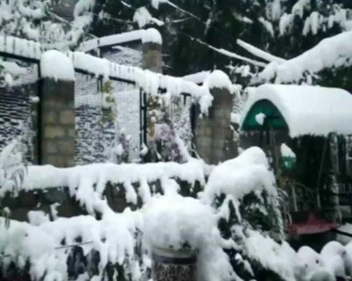 किन्नौर में हुई भारी बर्फबारी, बर्फ से ढंकी छते, सड़कें, पेड़