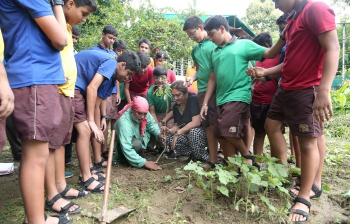 In Pics: Schools Across India Planted Saplings For A Greener Future