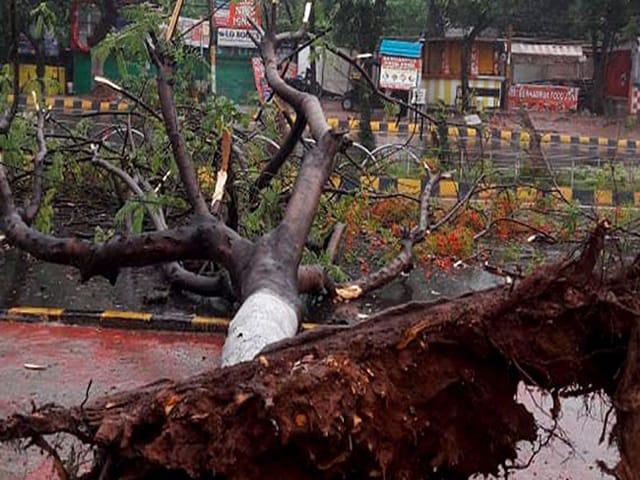 Photo : Cyclone Fani ओडिशा में समुद्री तट से टकराया, कई जगह पेड़ उखड़े, कई घरों की छतें उड़ीं