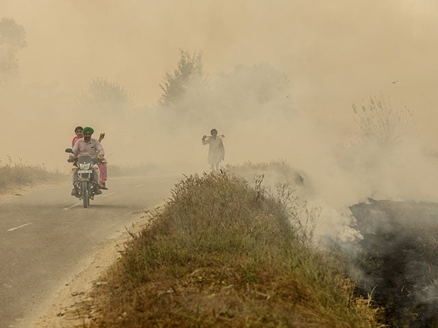 Photo : In Pictures: From Punjab's Burning Fields To Choking Delhi